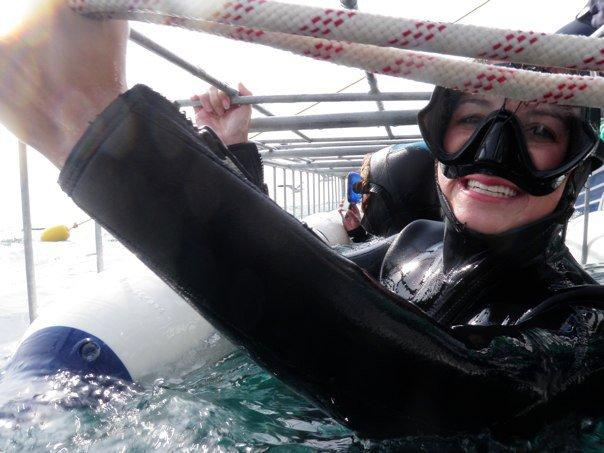 in the shark cage south africa