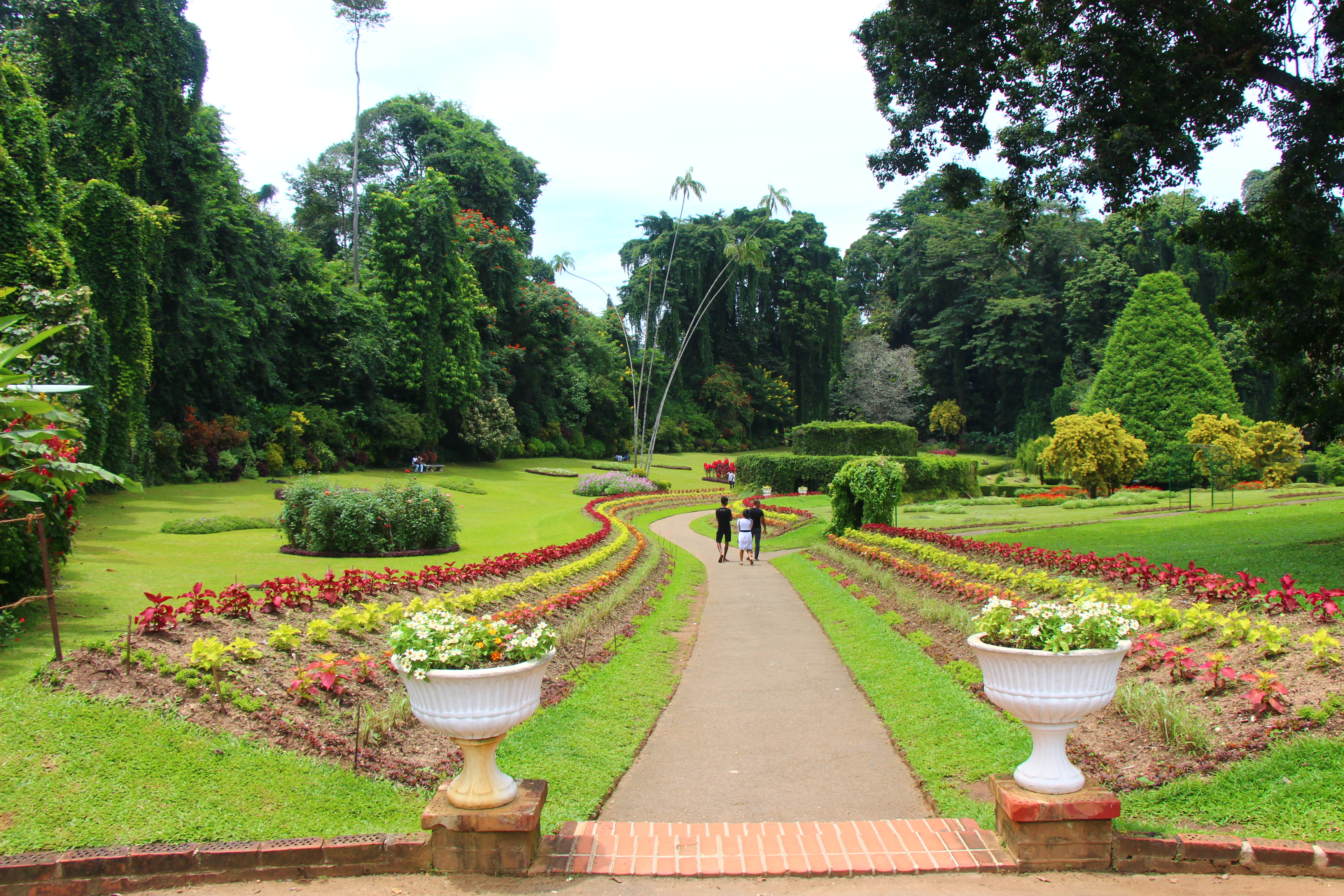 Peradenyia Botanical Gardens in Kandy