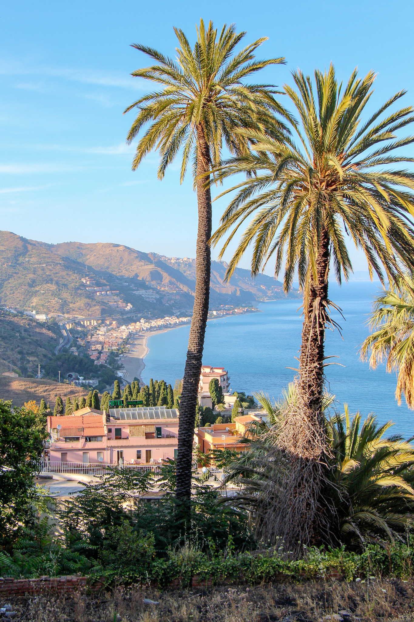 Palm Trees Over Taormina Sicily Scenery Italy