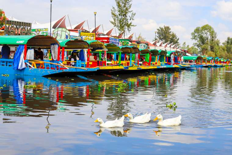 Xochimilco Colorful Boats Mexico City CDMX