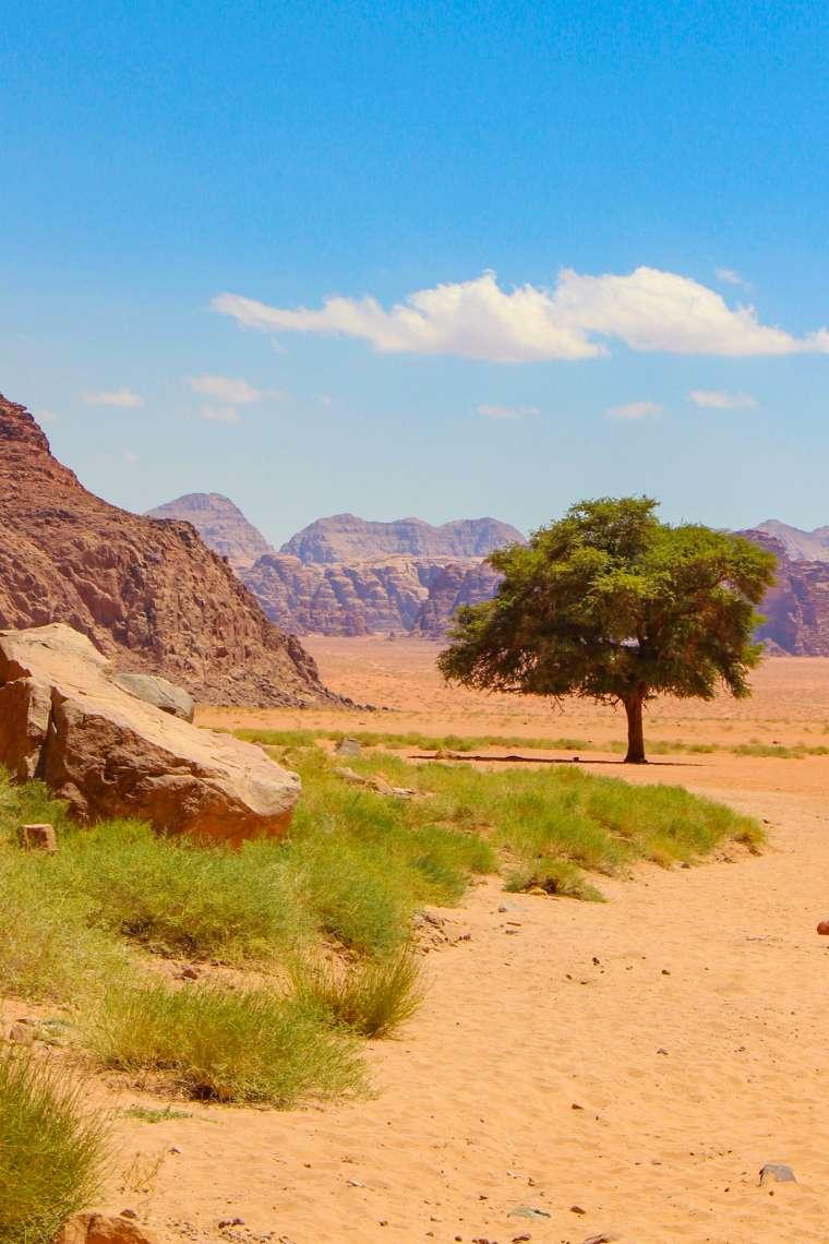 Wadi Rum Desert Scenery Jordan