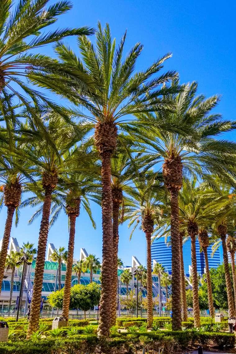 Gaslamp District Neighborhood San Diego California
