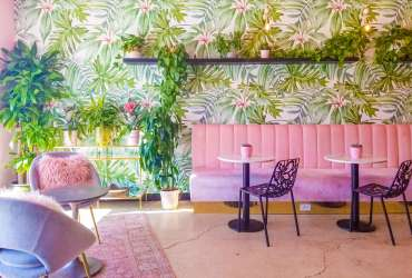 Holy Matcha Coffee Shop San Diego California