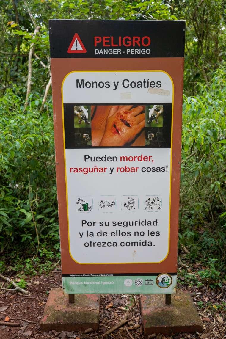 Wildlife Inside Iguazu National Park Argentina