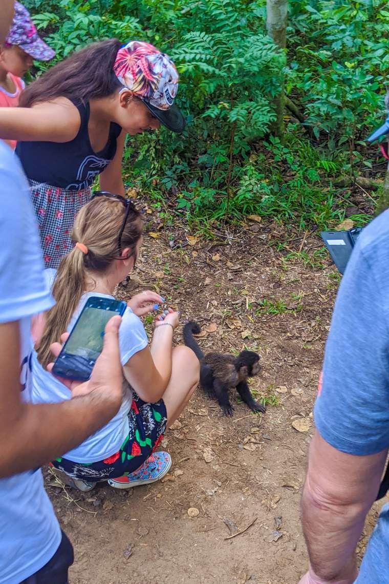 InstaWrecked Bad Wildlife Encounters Iguazu Falls Brazil Argentina