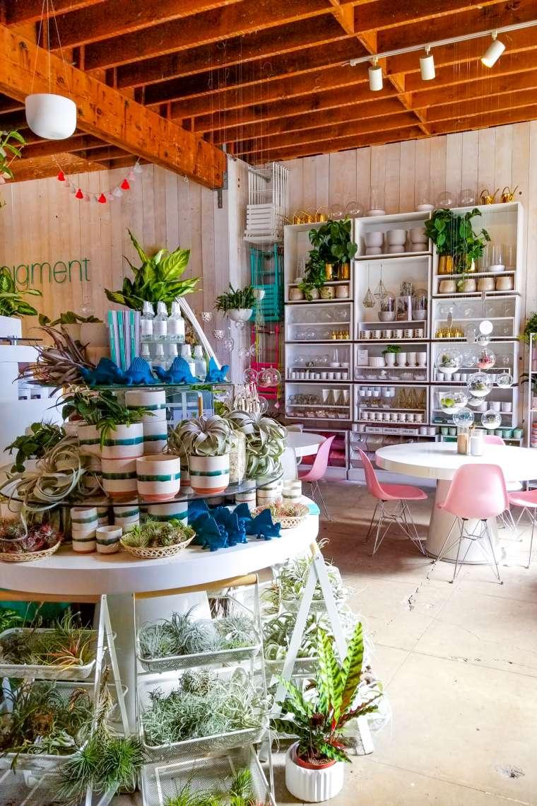 Pigment Boutique Shop San Diego California