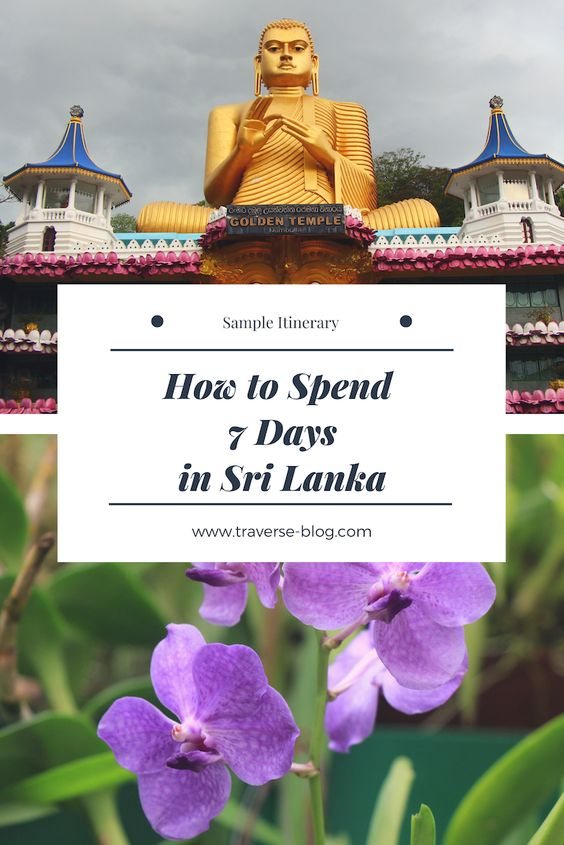 Sri Lanka 1 Week Itinerary Pinterest Image